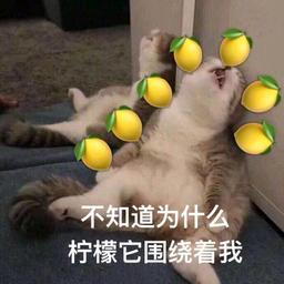 花院柠檬精